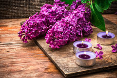 Bush may lilac and lighted candle Stock Photos