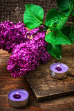 Bush may lilac and lighted candle Stock Image