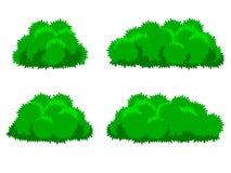 Bush plants cartoon Royalty Free Stock Images