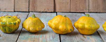 Bush pumpkins on a background of wooden boards Stock Photos