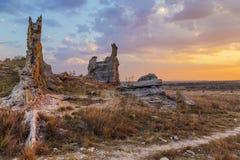 Bush pustyni krajobraz z skałą w Madagascar, Afryka Zdjęcia Stock