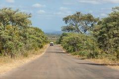 Bush road Stock Images