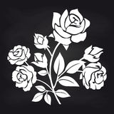 Bush of roses flowers on chalkboard vector illustration