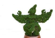 Bush rzeźbił bóstwa Obrazy Royalty Free