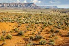 Bush in semi-desert. With mountains on the horizon near Zion National Park, Utah, USA Stock Photo