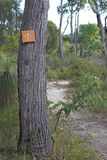Bush Sign. Arrow sign pointing down a trail in the middle of the bush royalty free stock photo