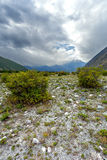 Bush, steppe, mountain Royalty Free Stock Image