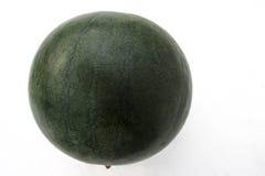 Bush Sugar Baby Watermelon Stock Image