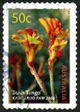 Bush-Tango-australische Briefmarke Lizenzfreie Stockbilder