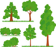 Bush trees grass Stock Photo