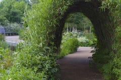 Bush tunel w parku Zdjęcia Royalty Free