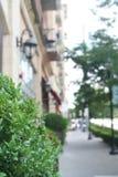 Bush ulicy widok Fotografia Royalty Free