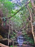 Bush vattenfall Fotografering för Bildbyråer