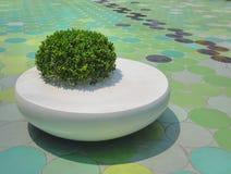 Bush vert et rond blanc Seat public sur le plancher de tuiles circulaire image stock