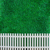 Bush wall with white fence for background Stock Image