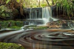 Bush-Wasserfall Stockbild