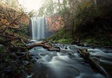 Bush waterfall Stock Images