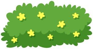 Bush with yellow flowers. Illustration royalty free illustration