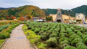 Bushalte no 21 'Kawaguchiko-meer' Royalty-vrije Stock Foto