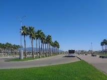 Bushaltestelle, Palmen und grünes Gras auf dem Rasen lizenzfreie stockbilder