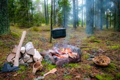 A bushcraft camp fire with hanging pot, axe and kuksa. Fire pit for bush craft with a hanging pot, firewood, an axe and a kuksa. Also a wooden plate filled with royalty free stock photos