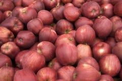 Bushel Appelen Stock Afbeeldingen