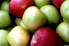 Bushel of apples Stock Photography
