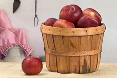 Bushel of Apples Royalty Free Stock Photos