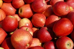Bushel of Apples. Close up of a bushel of apples shot from above stock images