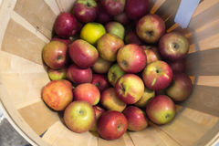 Bushel of Apples at Farmers Market Stock Photo