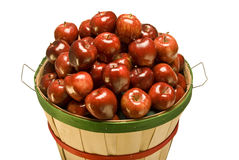 Bushel Basket Filled With Apples Royalty Free Stock Photography