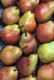 A bushel of fresh just picked green red pears. A bushel of fresh green red pears at the greengrocer stock photography