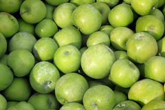 Bushel of Green Apples. A bushel of fresh just picked green apples stock photos