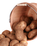 Bushel of potatoes isolated on white. Detailed image of a bushel of fresh potatoes stock photography