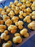 Bushell cytryny obrazy stock