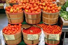 Bushels of tomatoes Royalty Free Stock Photo