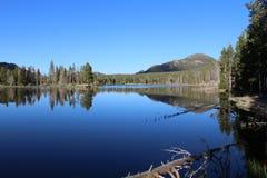 bushers утихомиривают валы захода солнца отражения moutain озера состава отражая вертикальные стоковое изображение