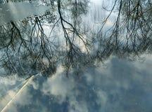bushers утихомиривают валы захода солнца отражения moutain озера состава отражая вертикальные Стоковые Фотографии RF