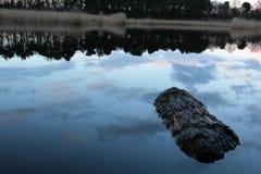 bushers lugnar trees för solnedgången för reflexionen för sammansättningslakemoutain vertikala reflekterande Arkivbild