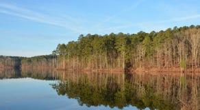 bushers uspokajają składu jeziornego moutain target1052_0_ odbicia zmierzchu drzewa pionowo zdjęcie royalty free