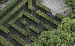 bushes кто-то утеска стоковые фотографии rf