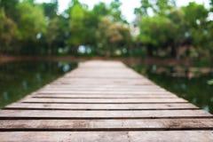 bushes река отражения парка footbridge Стоковое Изображение
