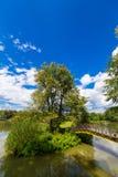 bushes река отражения парка footbridge Стоковые Изображения