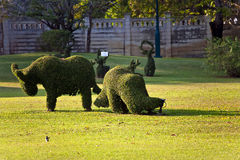 Bushes cut to animal figures in the park of Bang Pa-In Palace Stock Image