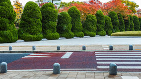 Bushes inside Hiroshima Peace Memorial Park Royalty Free Stock Photo