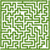 Bushes maze Royalty Free Stock Image