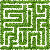 Bushes maze Royalty Free Stock Photography