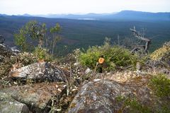 Bushes and stones with view into the valley at Reeds Lookout, Grampians, Victoria, Australia Royalty Free Stock Photo