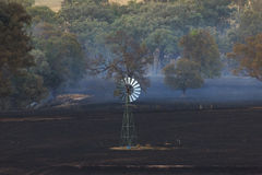 Bushfire Aftermath Stock Photography