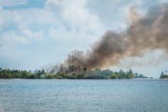 Bushfire, czerń dym nad palenie pożar lasu na tropikalnym jest Obrazy Stock